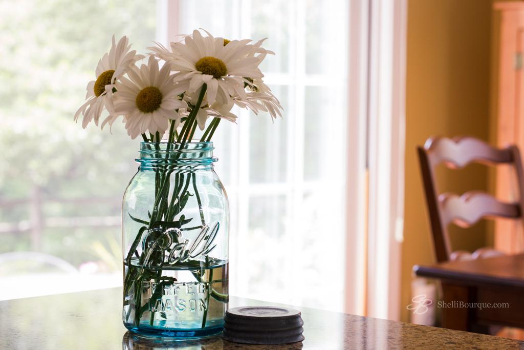 Daisies blue mason jar - ShelliBourque