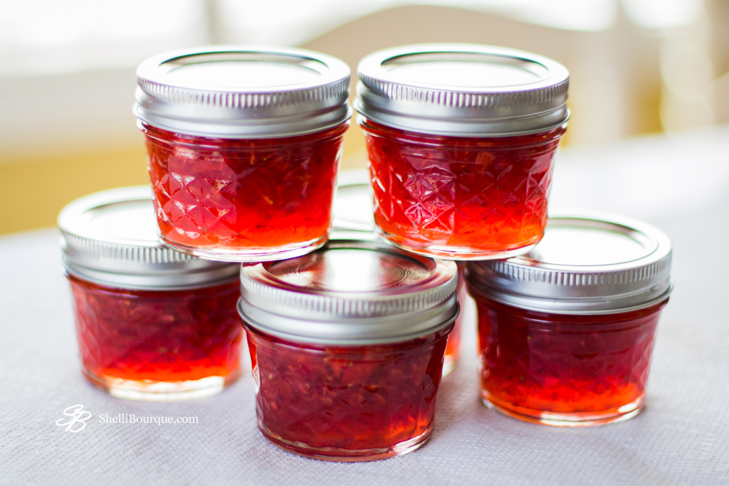 Strawberry Jam - ShelliBourque