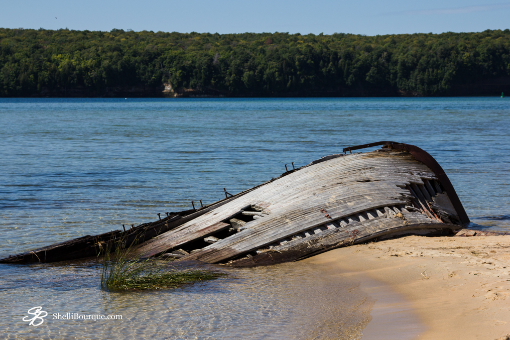 Shipwreck - ShelliBourque